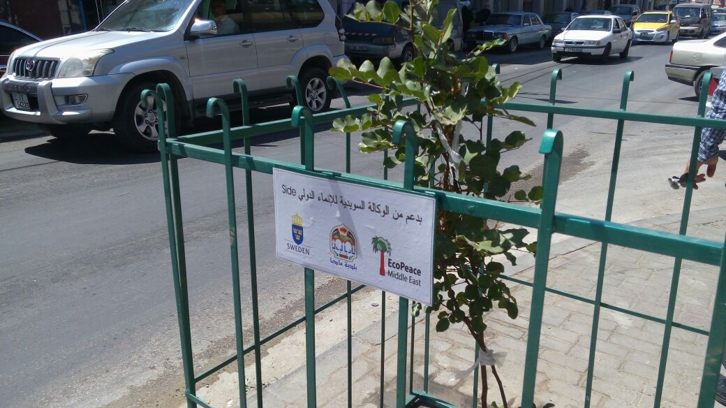 Community Tree Planting in Madaba Jordan